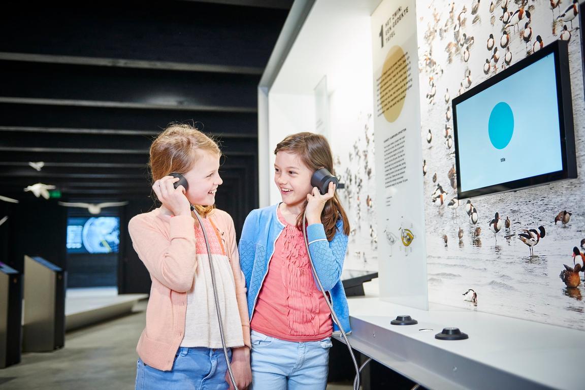 """Moderner Museum der Natur """"Het Zwin"""""""