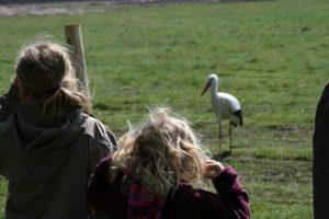 "Wanderung mit Zwin-Guides durch den ""Natuurpark Zwin"" Knokke-Heist @ Natuuurpark Zwin | Knokke-Heist | Vlaanderen | Belgien"