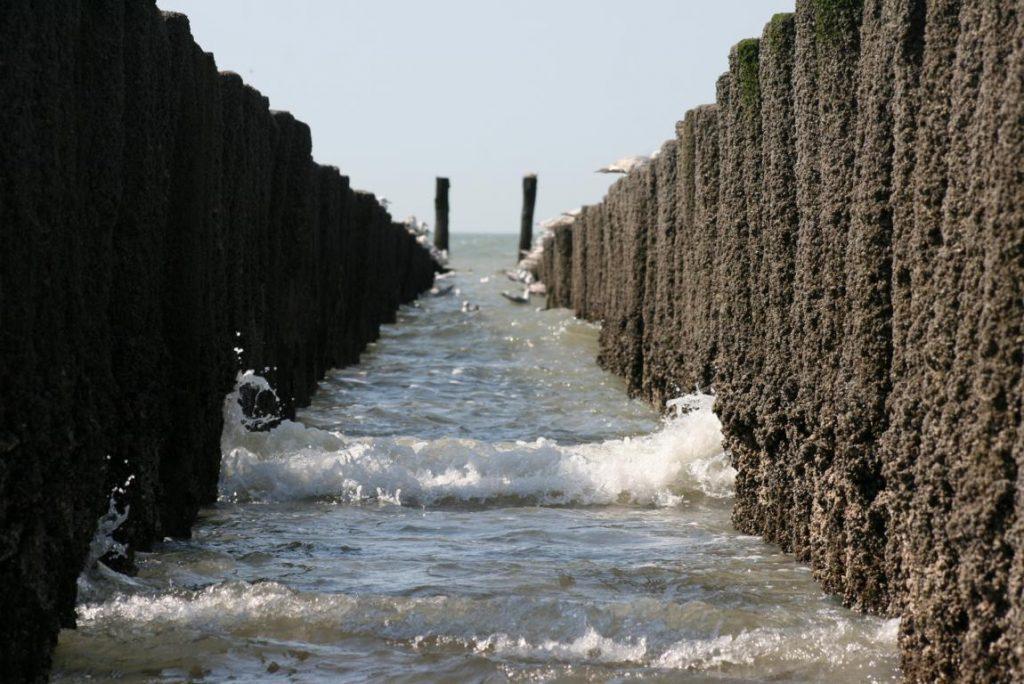 Wellenbrecher am Strand von Cadzand-Bad