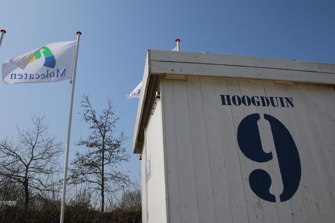 Molecaten Park Hoogduin in Cadzand-Bad: Strandnaher Campingplatz