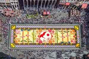 """Flowercarpet"" Blumenteppich Brüssel @ Grand Place Büssel | Brussel | Brussel | Belgien"