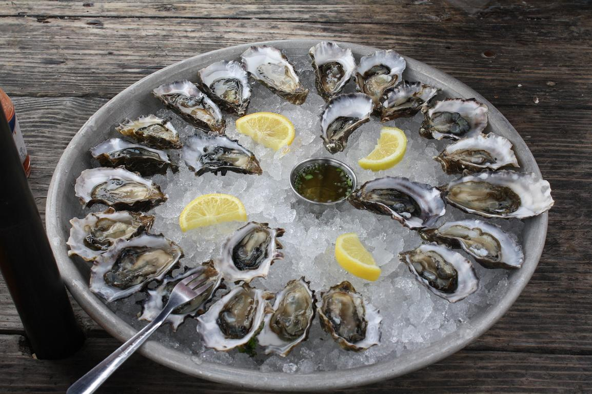 oysters-734484_1920