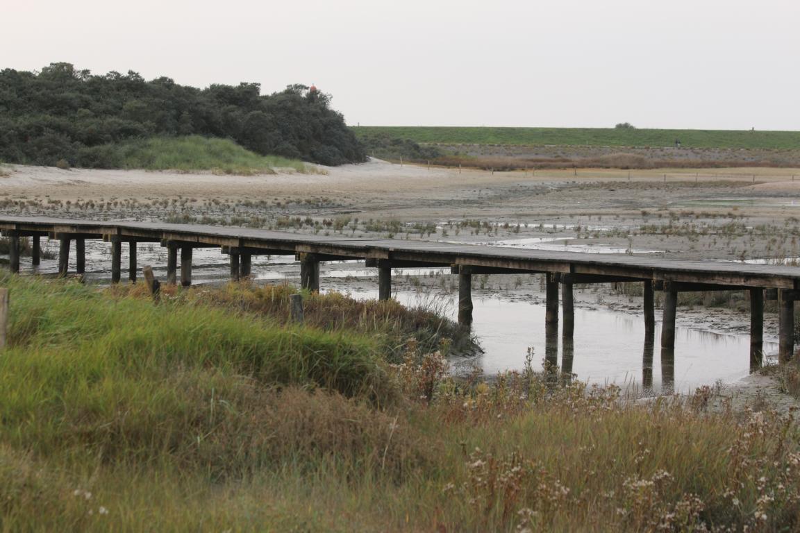 """""""Verdronken Zwarte Polder"""" Nieuwvliet"""