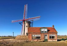 Windmühle Cadzand