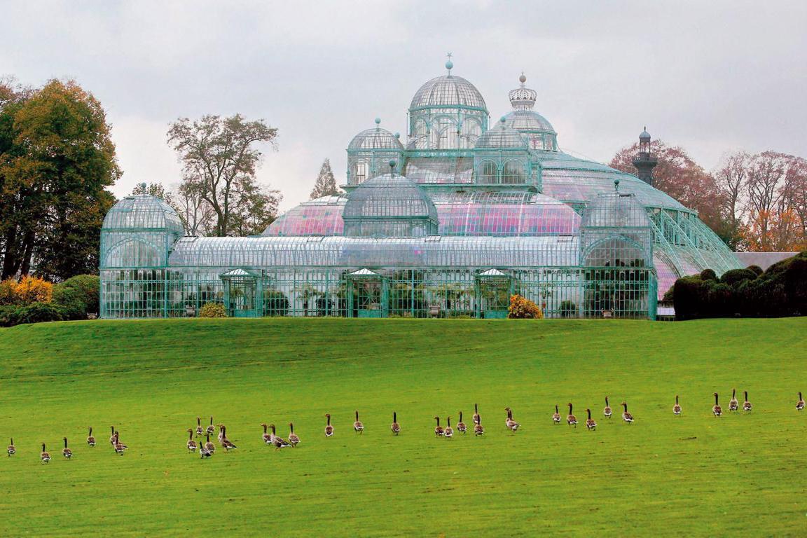 Brüssel - Königliche Gewächshäuser