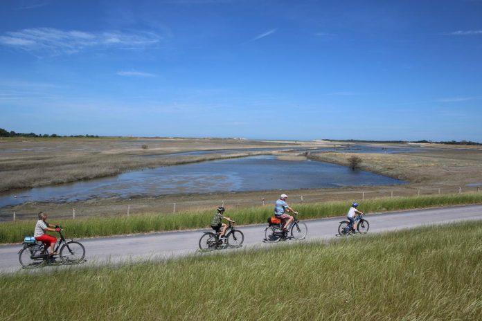 Naturschutzgebiet Zwin - Fahrradweg